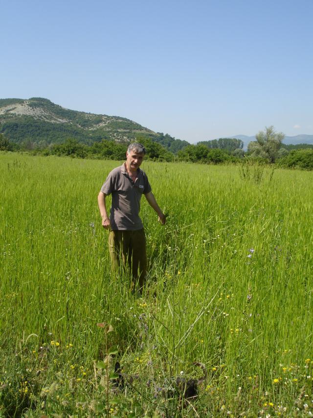 Фермерът и собственик на къща за гости Петко Ангелов от село Рабово (сн. Ива Тончева)