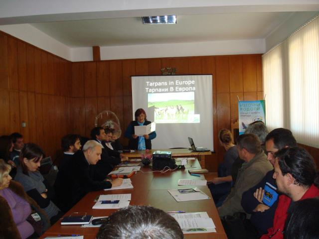 Round Table on Tarpan reintroduction (Photo by Iva Tontcheva)