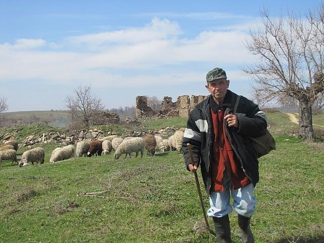 Shepherd near Pelevun, (by Mihaela Kircheva)