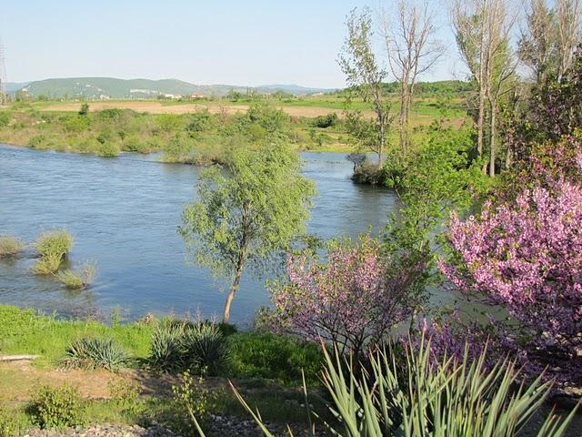 Arda river near Rabovo (by Mihaela Kircheva)